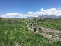 3M Volunteers at Big Bend Habitat Restoration